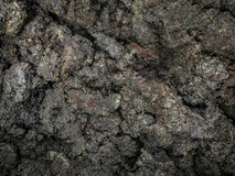 Dark dirt brown soil ground texture background. Royalty Free Stock Images
