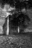 Dark doorway. A tree and vines growing around a dark creepy doorway.  Black and white Royalty Free Stock Images