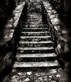 Dark and eerie staircase. A black and white view of a stone staircase in a forest, edited to look dark and eerie royalty free stock images