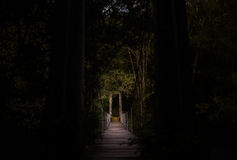 Dark enclosed bridge passage in forest Royalty Free Stock Images