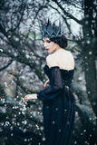 A dark evil queen stock images