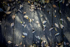 Dark Fall Background. Fallen Leaves on Wooden Planks. Autumn Design royalty free stock images