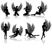 Dark fallen angel. In different poses Royalty Free Stock Photos