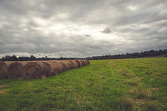 Dark field before the storm Royalty Free Stock Images