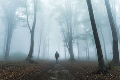 Dark figure in foggy forest Royalty Free Stock Photos