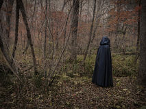 Dark figure in the forest 3 Royalty Free Stock Photos