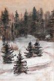 Dark fir forest. Road, winter Stock Photos