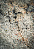 Dark fissures on limestone rock Royalty Free Stock Image