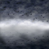 Dark flock Stock Photography