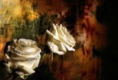 Dark flower design Stock Photo