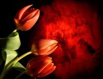Dark flower design Stock Photography