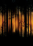 Dark Foggy Forest. Spooky foggy forest at night with trees silhouettes illustration Royalty Free Stock Photo