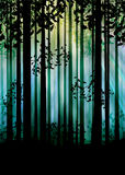 Dark Foggy Forest. Spooky foggy forest at night with trees silhouettes illustration Stock Photos