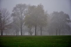 Dark foggy morning in a park. Autumn foggy weather and dark November morning at the park Royalty Free Stock Photography