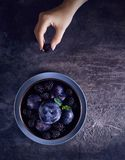 Dark food photo with blackberry and plums stock photo