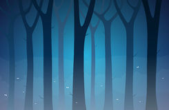 Dark Forest. Dark and gloomy forest at night Stock Photos