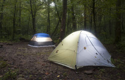Dark forest camping Stock Images