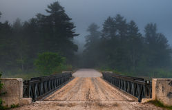 Dark forest over Corry Lake Bridge, chalk river. Stock Photography