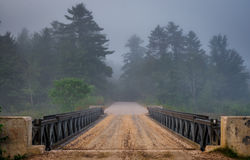 Dark forest over Corry Lake Bridge, chalk river. Royalty Free Stock Images