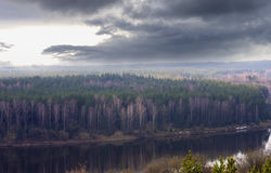 Dark forest by the river Stock Photography