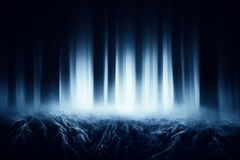 Dark forest with roots royalty free stock photo