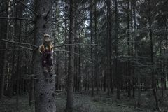 Dark forest and a scarecrow in a dried tree. Sinister and dark forest and a shabby scarecrow, sitting in a tree, lurking for future victims. A design or context royalty free stock photos