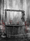 Dark forest with a well. Black and white forest scenery with an old well and red roses royalty free illustration