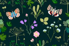 Dark garden with butterflies, herbs, flowers. Seamless pattern with Victorian motifs. Botanical illustration with different floral elements. Vector for textile Stock Images