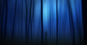 Dark ghostly forest. With silhouette of a person Stock Photo