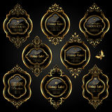 Dark gold-framed labels Stock Images