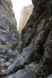Dark gorge in the Tien Shan Royalty Free Stock Image