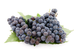 Dark grape with leaf Stock Images