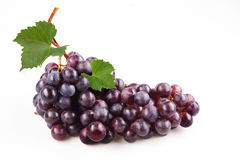 Dark grape with leaves. Isolated on white. Fresh black grapes with leaves. Isolated on white Royalty Free Stock Images