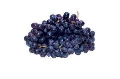 Dark grapes Royalty Free Stock Image