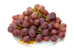 Dark grapes Stock Images