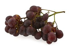 Dark grapes Royalty Free Stock Photo