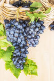 Dark grapes in a basket.  Summer. Harvest. Royalty Free Stock Images