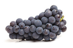Dark grapes Stock Images