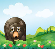 A dark gray bear in the garden Royalty Free Stock Photo