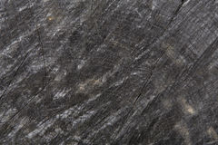 Dark gray or black wood texture closeup background Stock Images