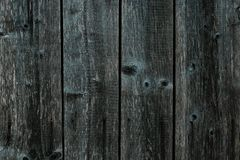 Dark gray green wooden fence. Shabby table, dirty oak, alder tree, pine lumber. Old grey wooden boards. Pattern of wooden surface. Of green logs. Backgrounds of royalty free stock photos
