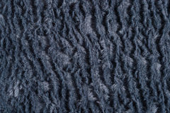 Dark gray polar fleece background Royalty Free Stock Image