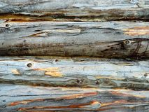 Dark gray uneven wood trunks in the row Royalty Free Stock Photos