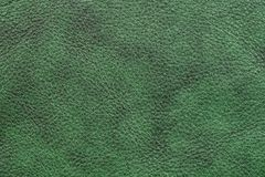 Dark green leather. Furniture upholstery leather of dark green color Stock Images