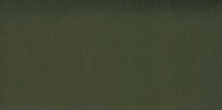 Dark green paper background Royalty Free Stock Images