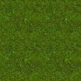 Dark green seamless abstract moss background Stock Photography