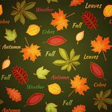 Dark green seamless pattern with autumn leaves Royalty Free Stock Photos