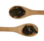Dark Green Seaweed Salad in Wooden Spoons with a Clipping Path. Pickled Kelp or Laminaria Japonica Royalty Free Stock Photo