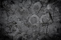 dark grey background texture Stock Image