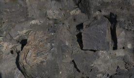 Dark grey black slate background or texture. Dark grey black slate background or texture Stock Photography